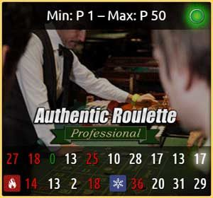 authentic professional roulette