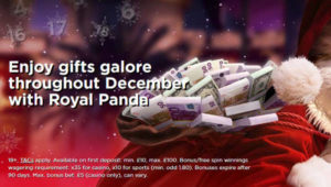 visit royal panda in december